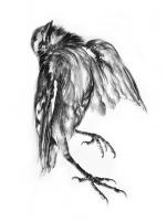 Helga Gasser_Dancing Birds