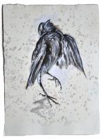 Helga Gasser_Tap Dancing Bird_Tusche auf Schimmelpapier_33x25cm_2016