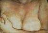 Komm an Mamas Busen! / Bleistift und Tusche auf Papier / 50x70cm / 2010