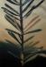 Helga Gasser_Nadelschäden 4 / Öl auf MDF / 82x57,5cm / 2004