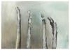Helga Gasser_aus der Serie November / Mischtechnik auf Papier / 50x70 / 2011