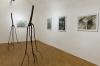 Helga Gasser_November Installation / Kunstraum ProArte / Oktober 2011 (2 Objekte, Apfelholz, ca. 200x150, 2011)