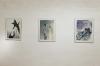 Helga Gasser_Ansicht Kunstraum ProArte