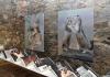 Ausstellungsansicht_Leporello von Gregor Pirker_Malereien von Helga Gasser_2021